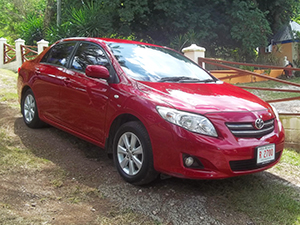Antigua Car Rental - Toyota Corolla