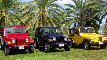Tropical Car Rentals Antigua Automobile Vehicle Jeep 4x4